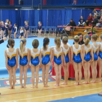 Lakeshore Gymnastics Academy Girls Team